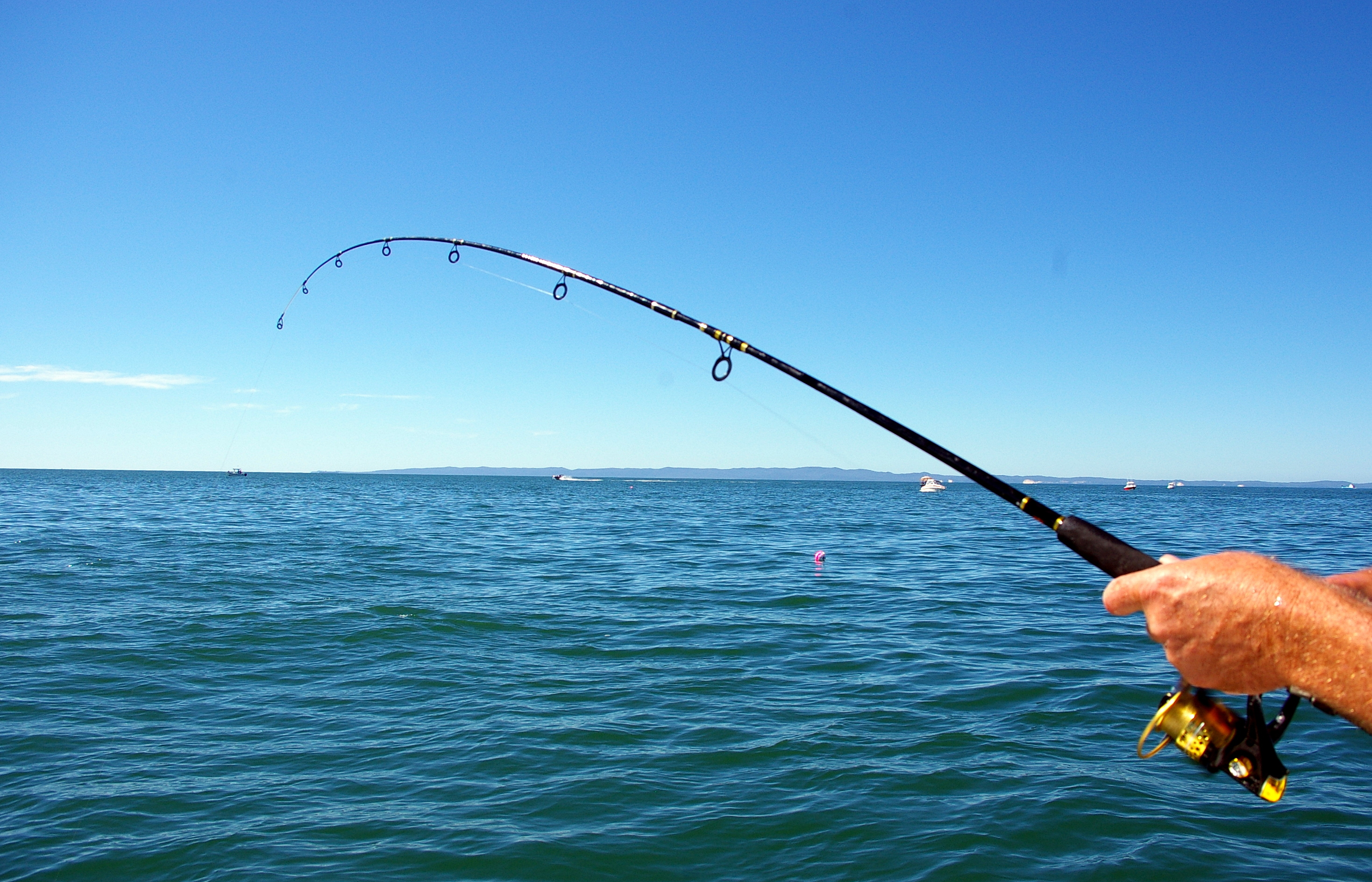Flippin out charters for Ri fishing charters
